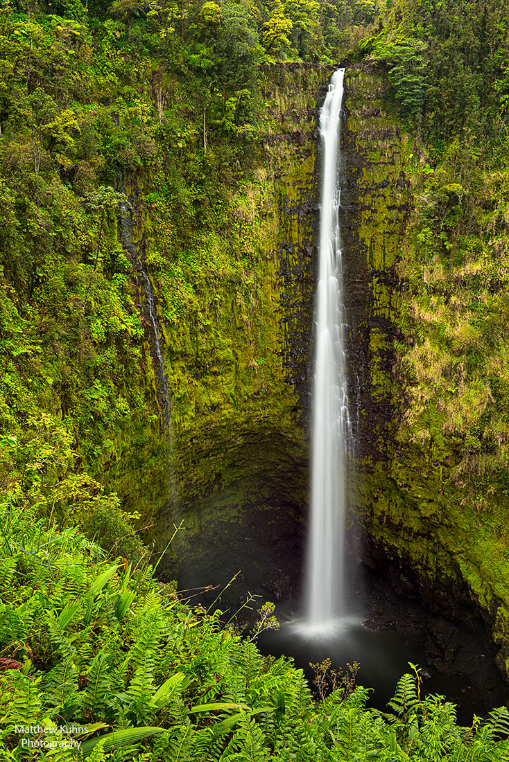 Photograph Akaka Falls by Matthew Kuhns on 500px