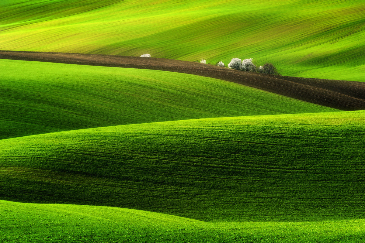 Photograph Spring... by Pawel Kucharski on 500px