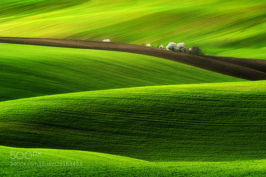 Spring... by Pawel Kucharski (pablook)) on 500px.com