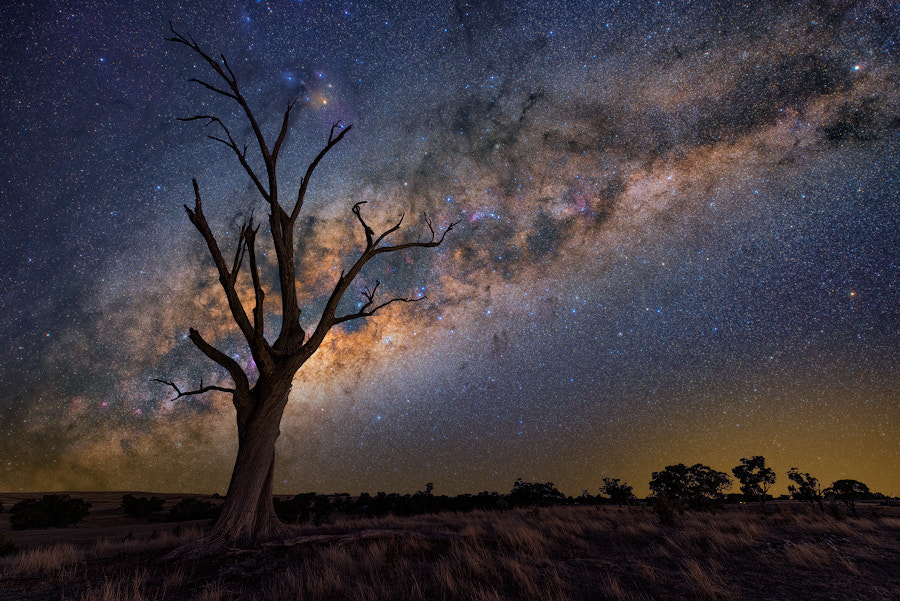 Photograph Skyfall by Lincoln Harrison on 500px