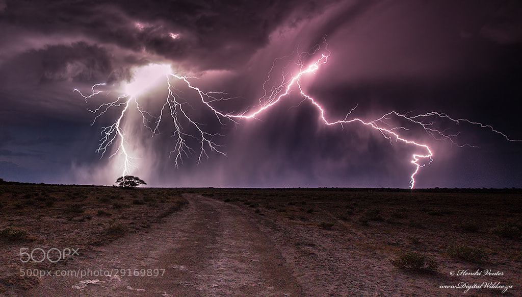 Photograph Kalahari Power by Hendri Venter on 500px