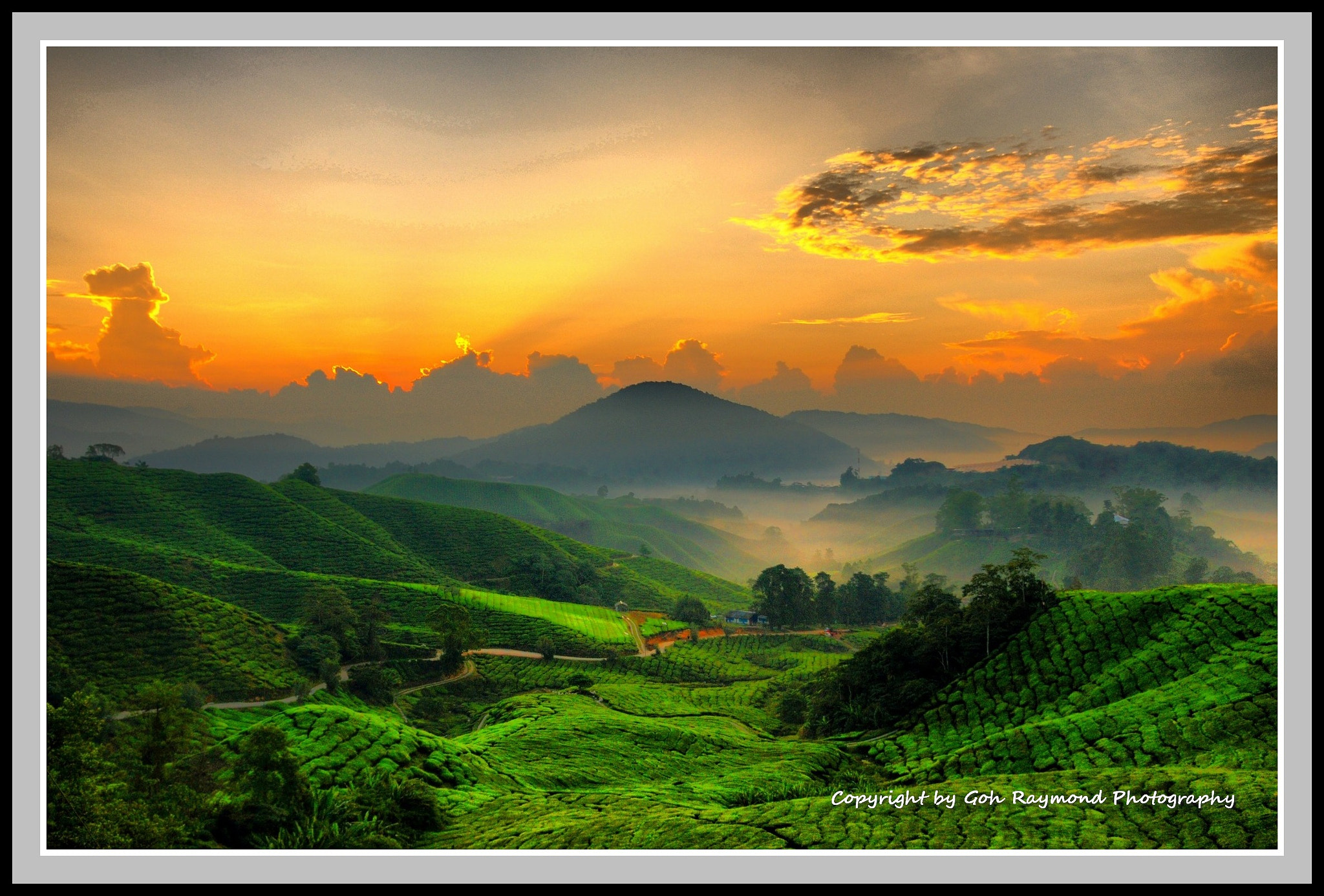 Photograph Sunrise @ Camera Highlands#1a by Goh Raymond on 500px