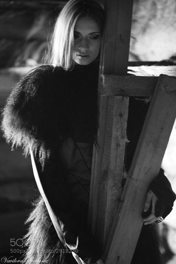 Photograph *** by Svetlana Vavilova  on 500px