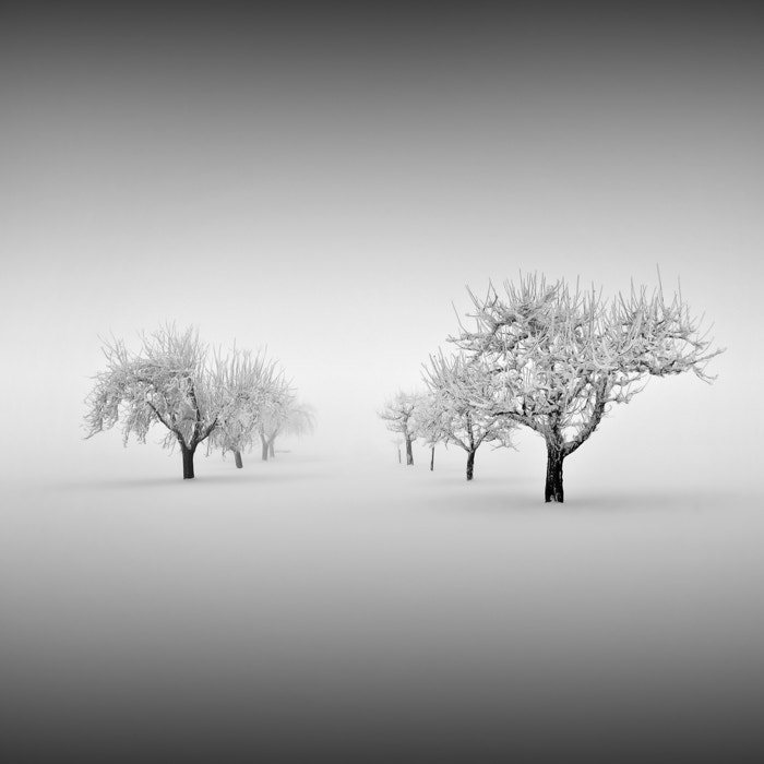 Photograph frozen by Maximilian & Christian Baeuchle on 500px