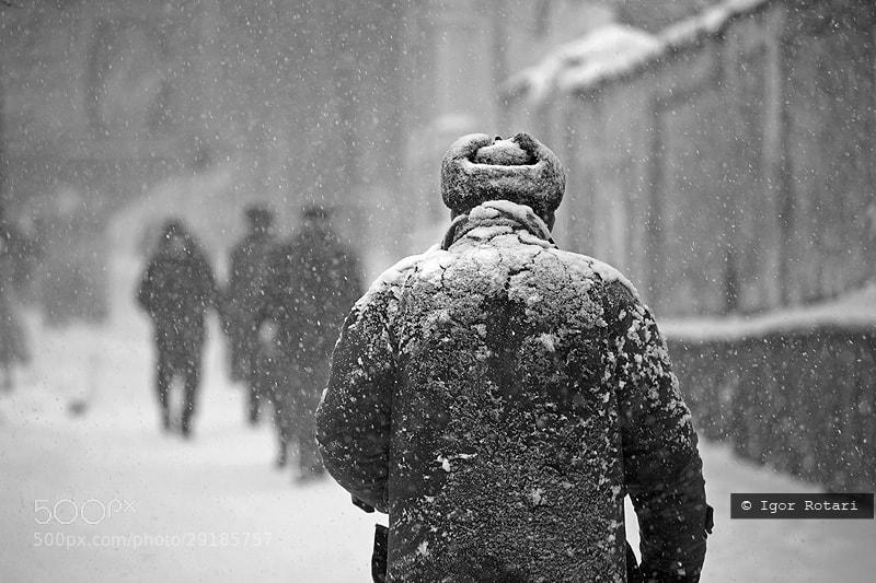 Photograph Untitled by igor rotari on 500px