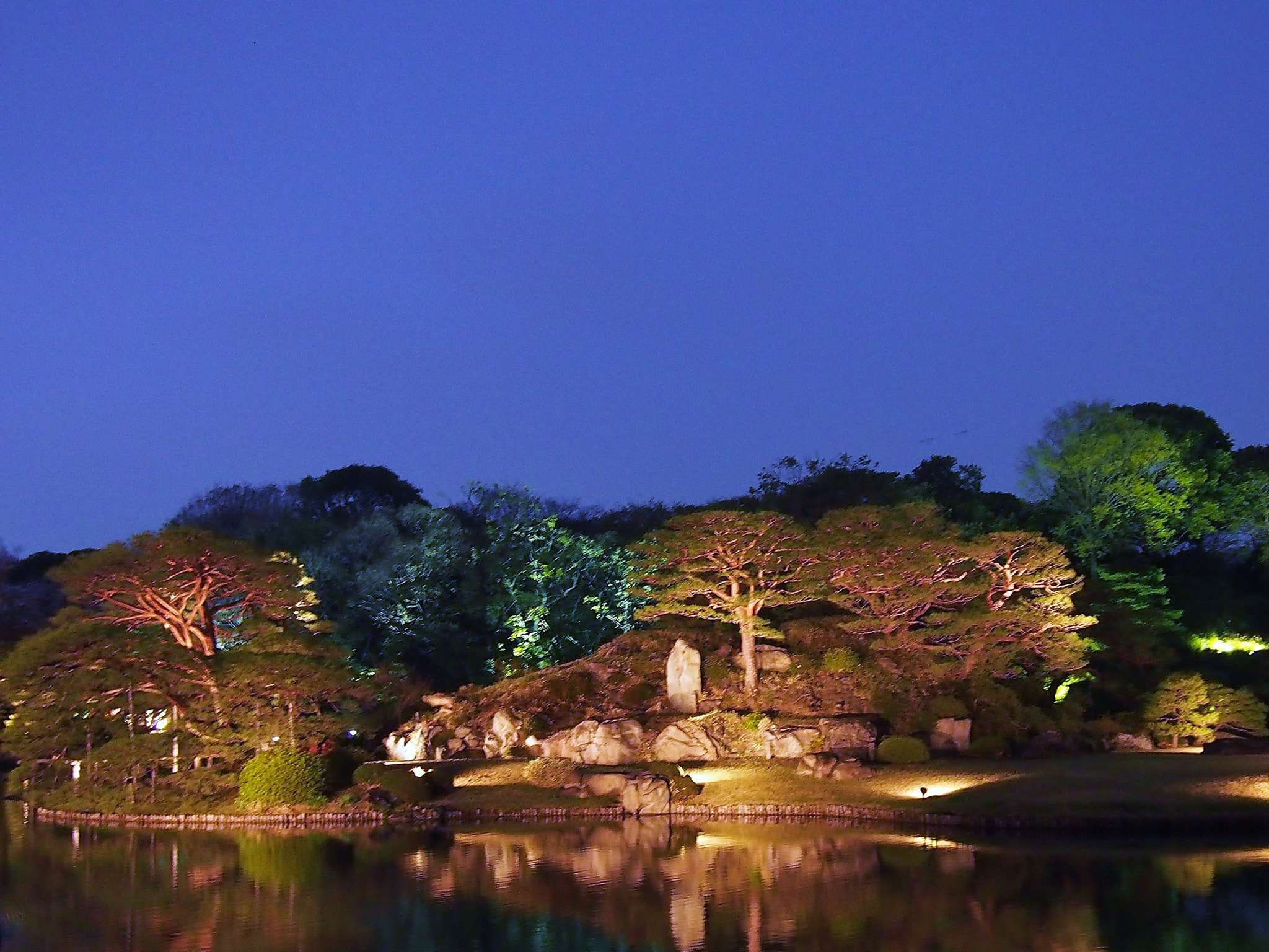Photograph Japanese garden by THE TOKYO FOREST on 500px