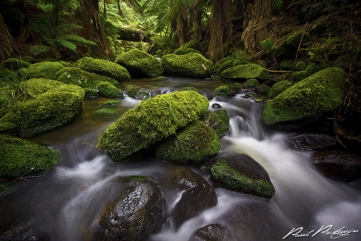 Photograph Otways Flow by Paul Pichugin on 500px