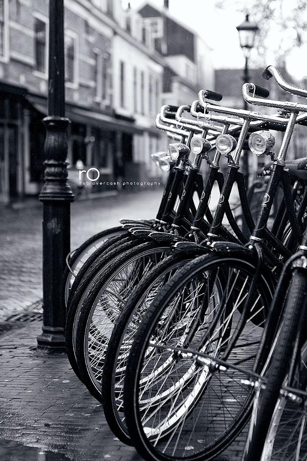 Dutchie Style