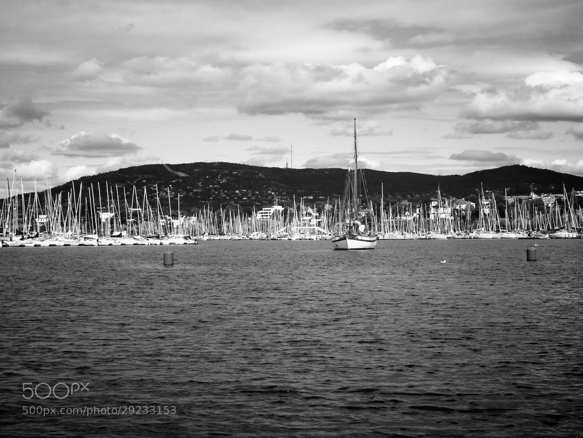 Photograph Oslo Fjorde by Nick Quinn on 500px