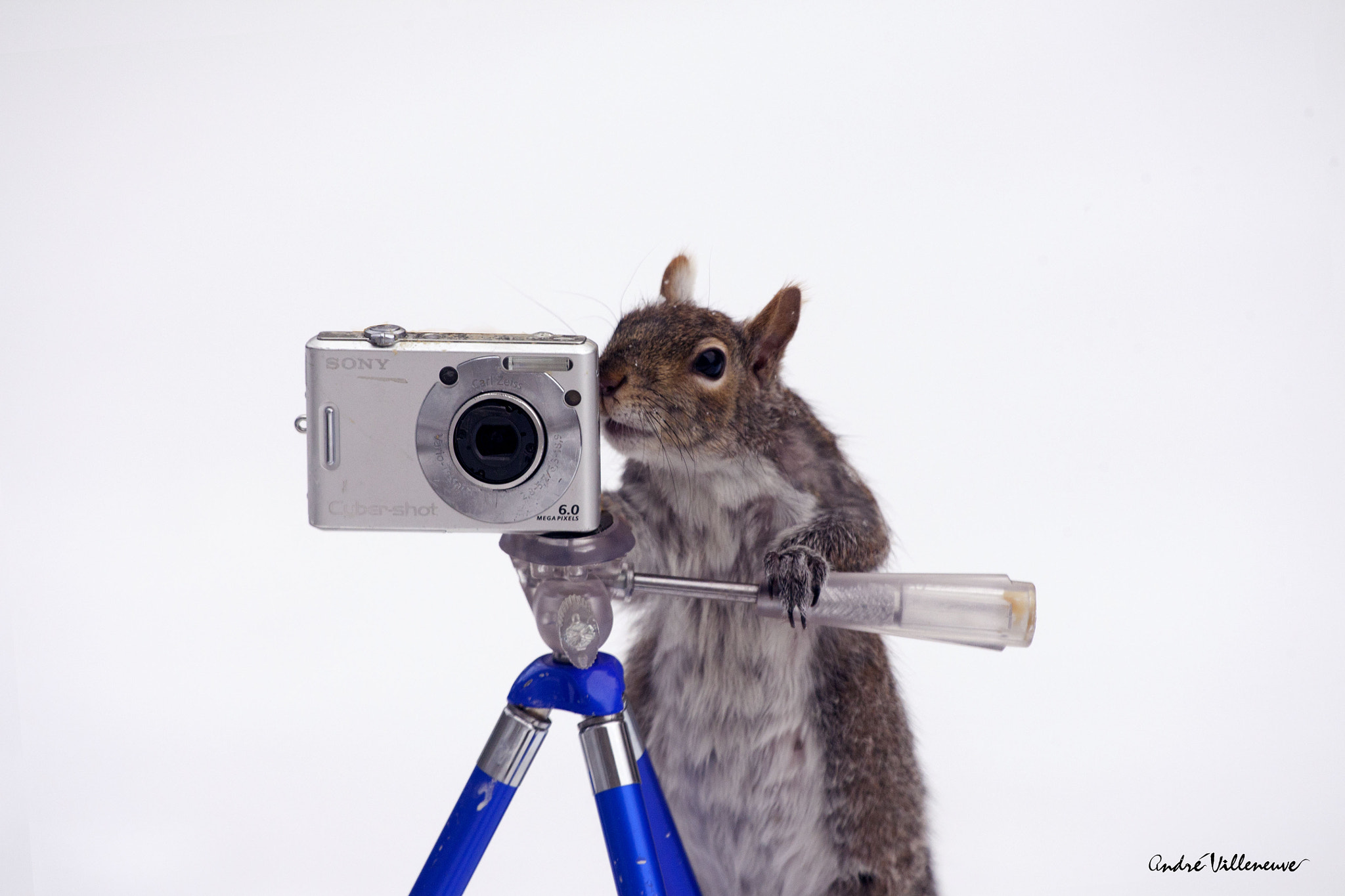 Photograph A little smile please ! by Andre Villeneuve on 500px