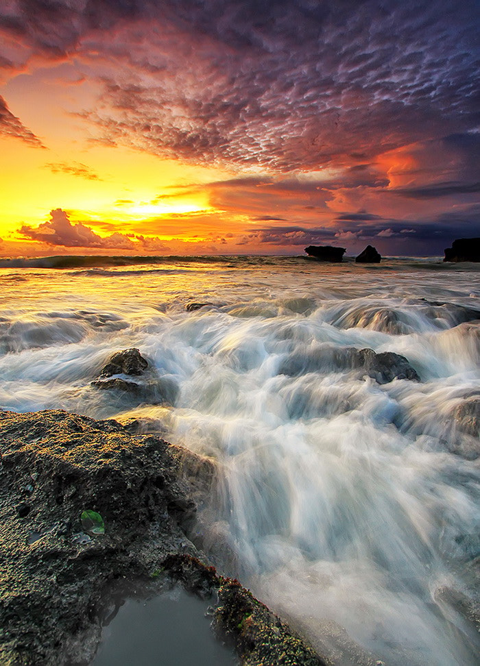 Photograph Evening Light  by Agoes Antara on 500px