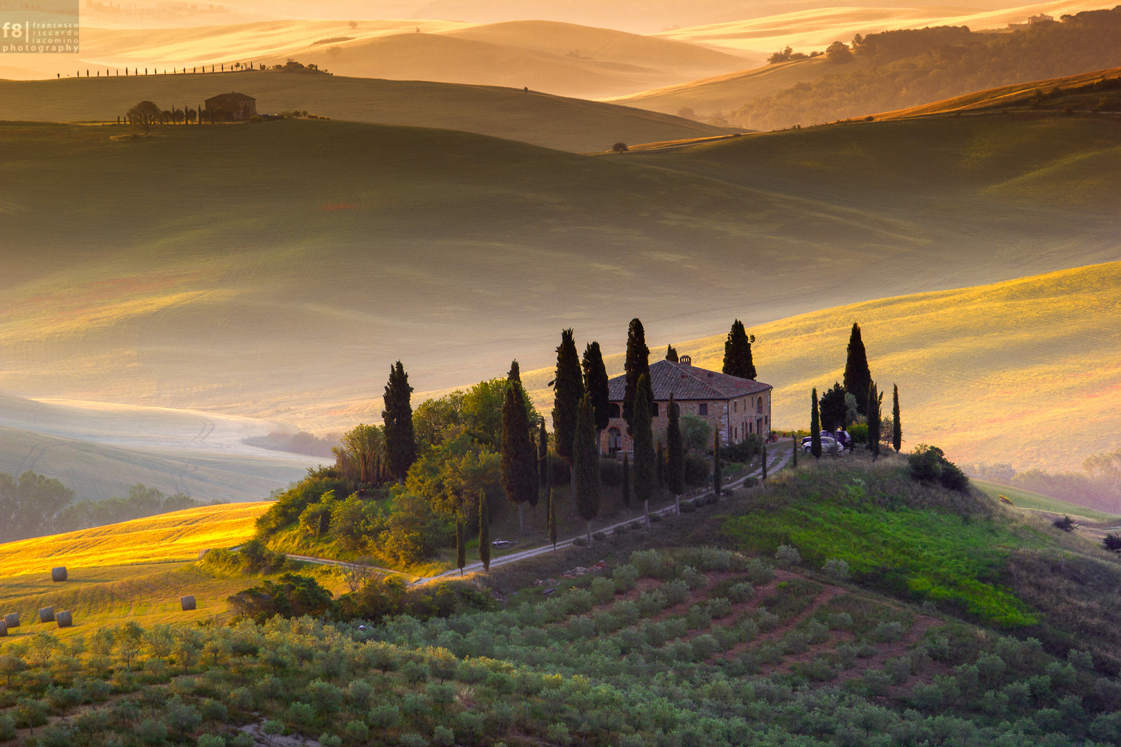 Photograph Of green and gold by Francesco Riccardo Iacomino on 500px