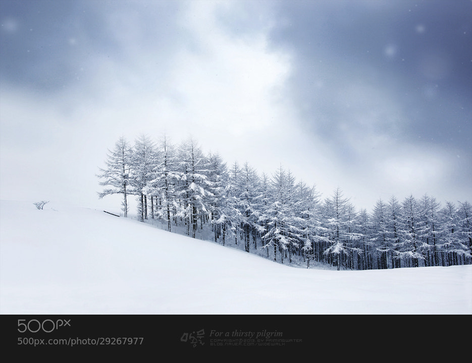 Photograph snow scene by JungWoo Lee on 500px