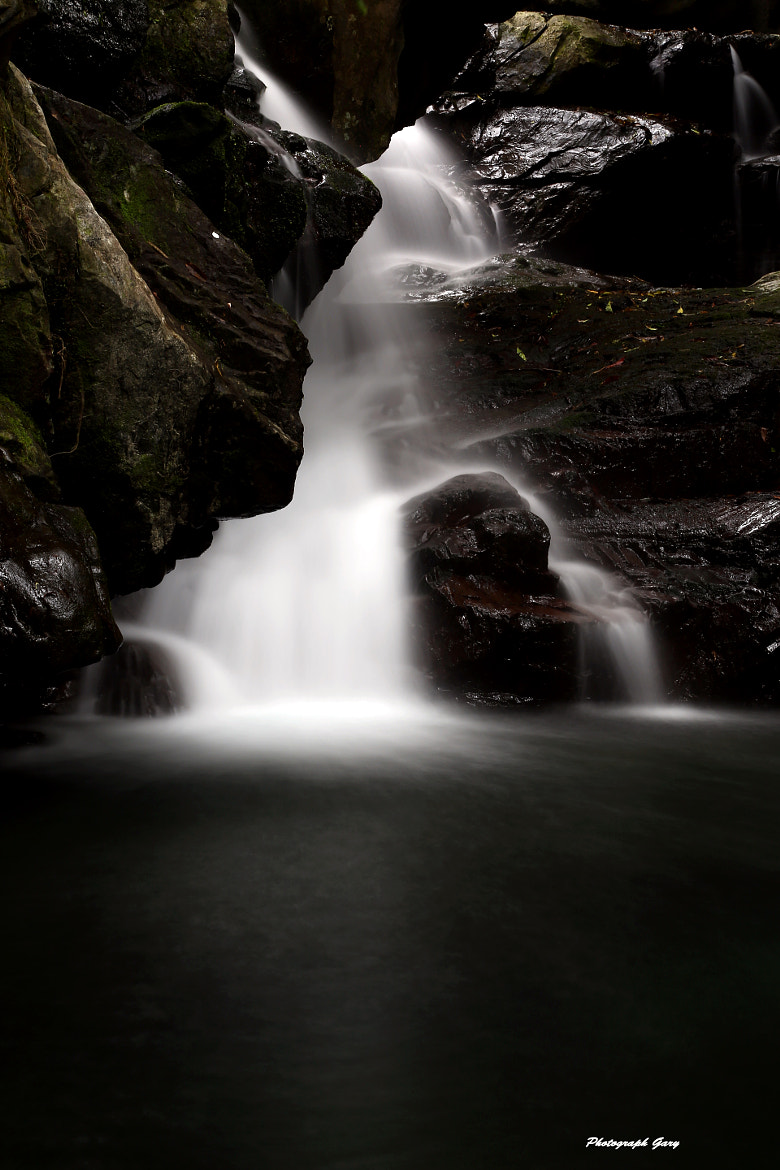 Photograph Cave springs by garywu on 500px