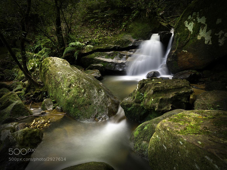Photograph Jamison Valley, Blue Mountains National Park by Antonio Ranieri on 500px