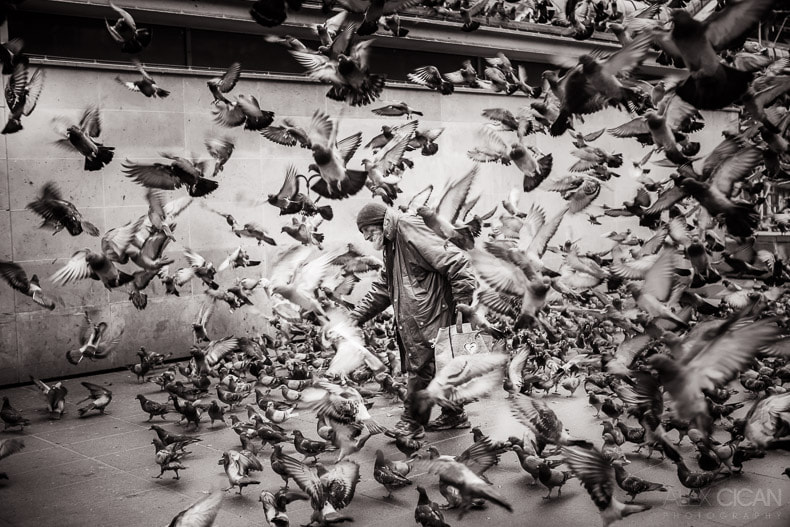 Photograph Pigeon man by Alex Cican on 500px