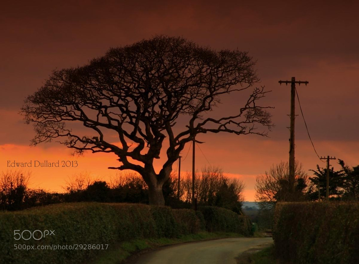 Photograph Country road. by EDWARD DULLARD on 500px