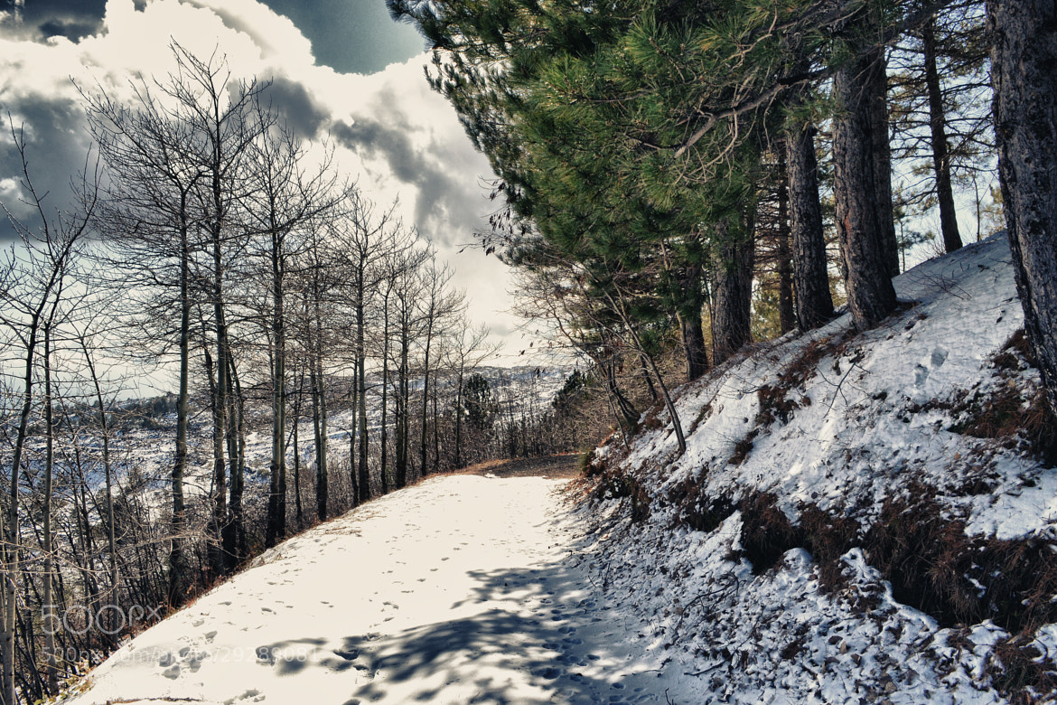 Photograph Snow way by Salvo Mangiaglia on 500px