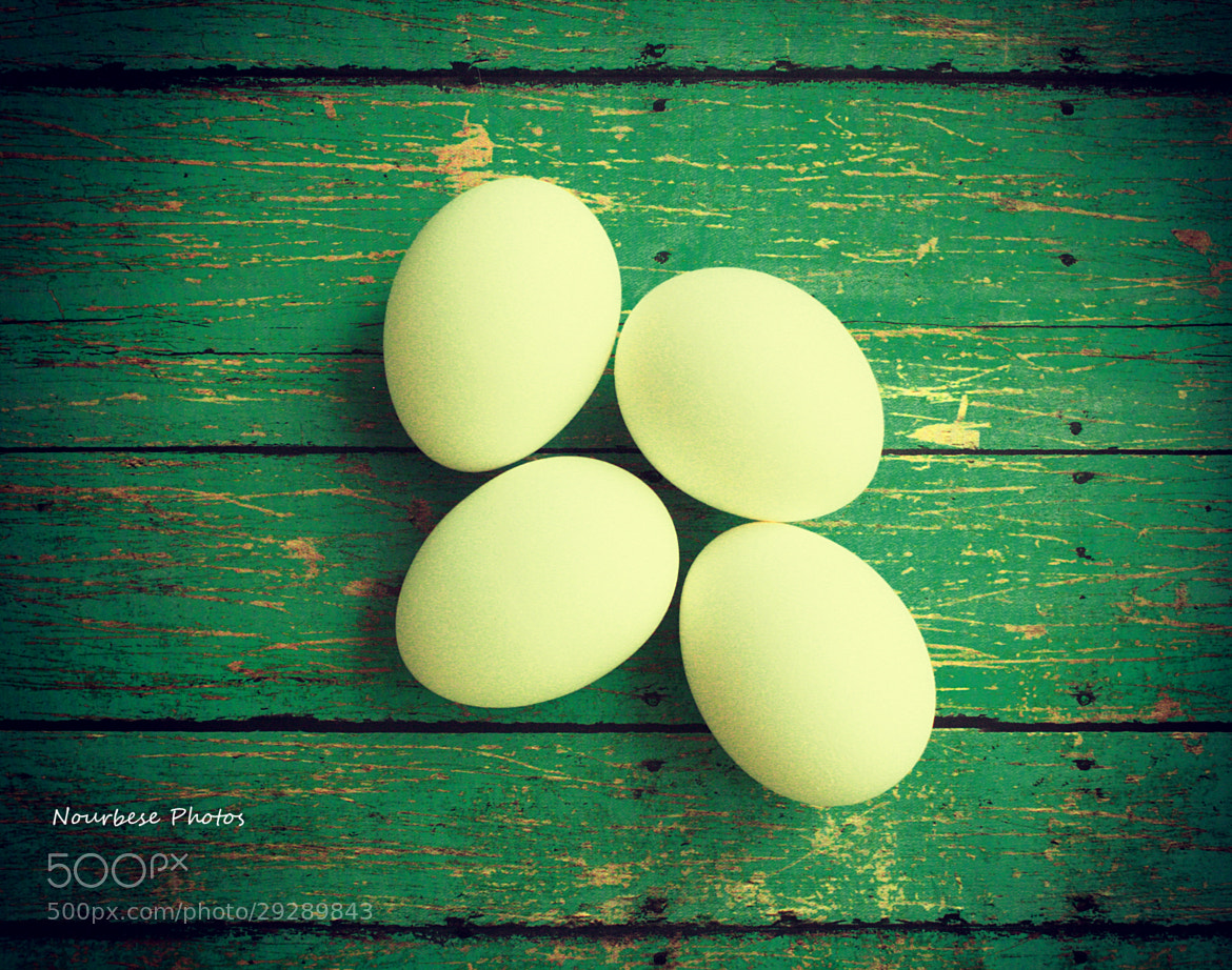Photograph Eggs by Marisa Nourbese on 500px