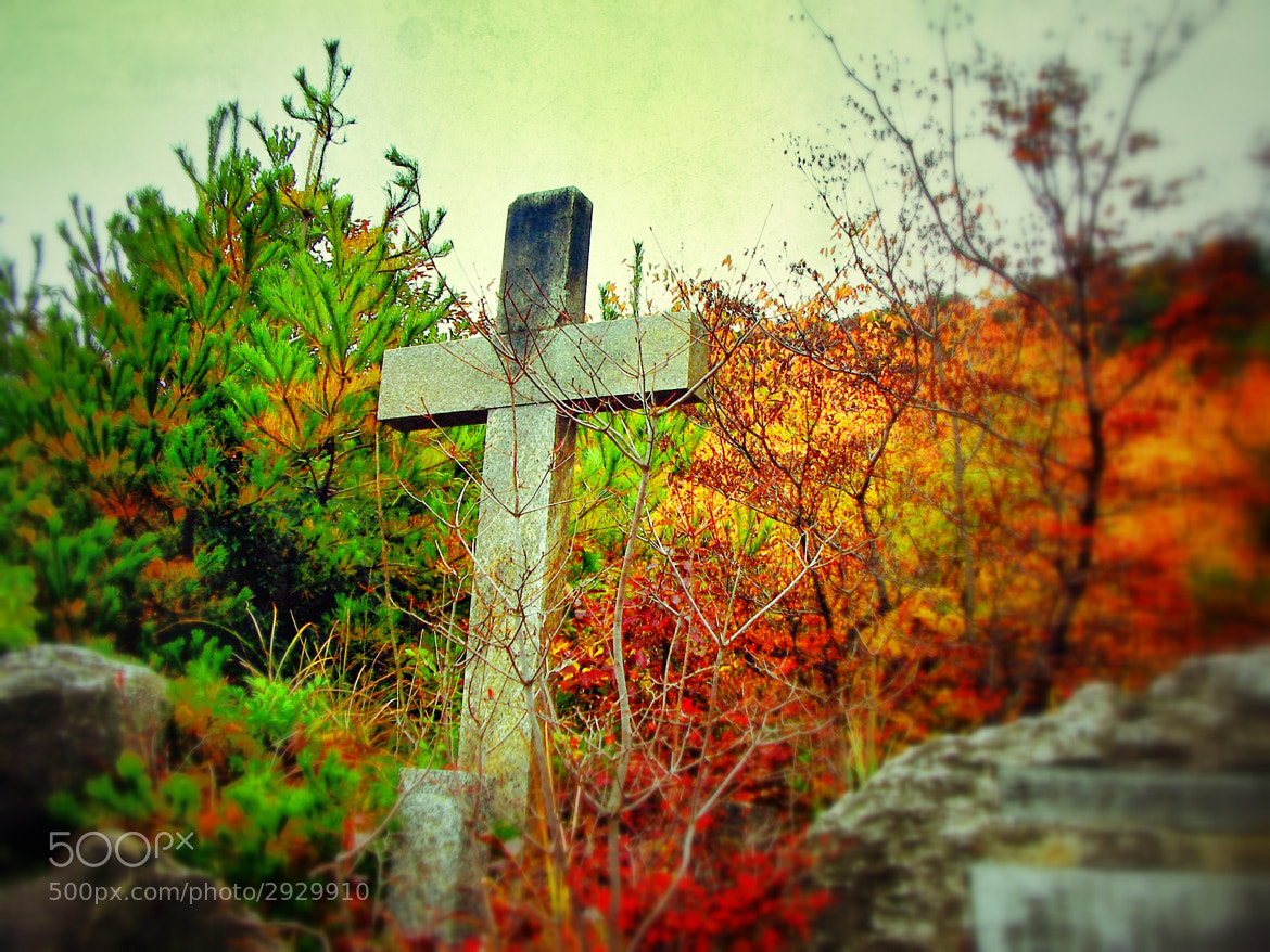 Photograph At The Cross (Kyushu, Japan) by Eustacia  Tan on 500px