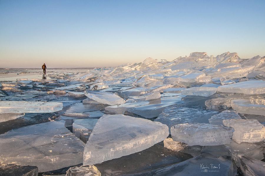 Ice by Tamas Voros on 500px.com