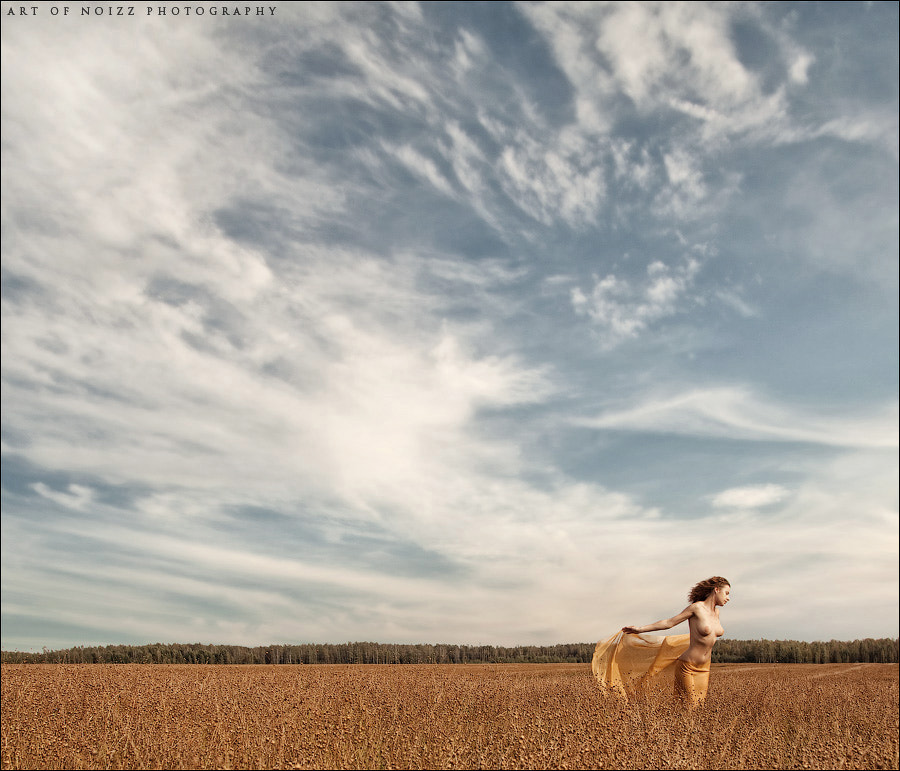Photograph Summer's End by Art Of Noizz Photography on 500px