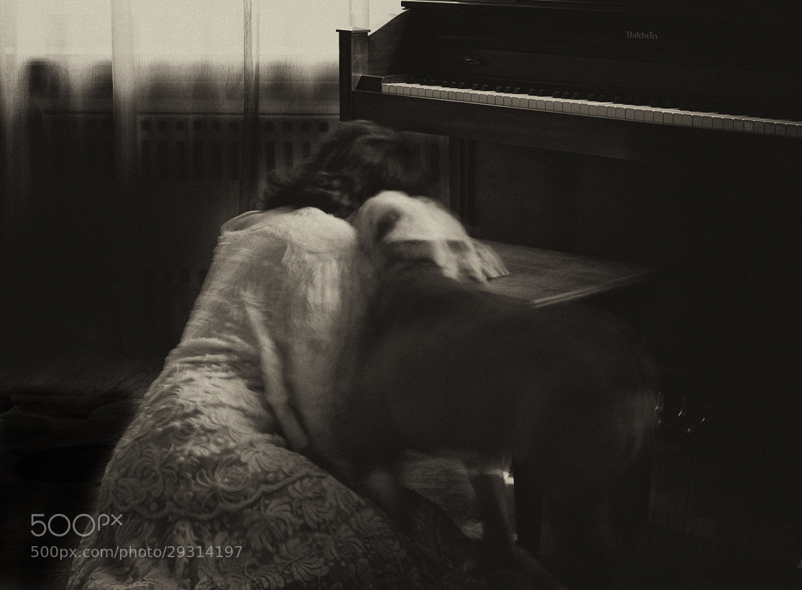 Photograph Deep sadness and the comfort from the dog by Sonia Braga on 500px