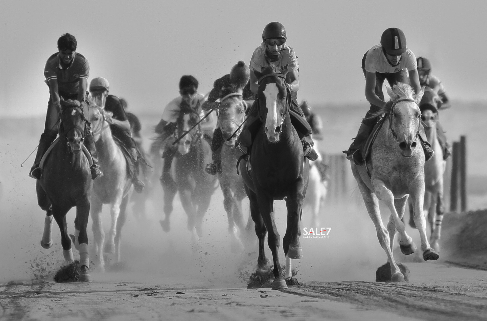 Photograph Horse by saleh alhathloul | صالح الهذلول on 500px