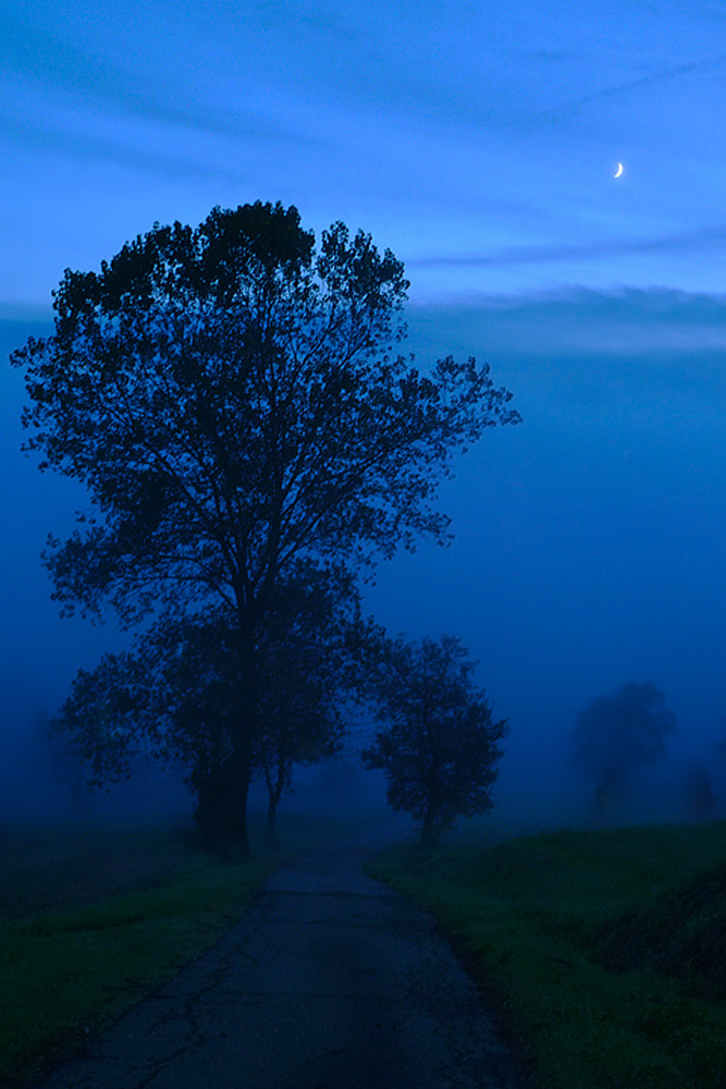 Photograph Blue Fog ... by Paolo Guidetti on 500px