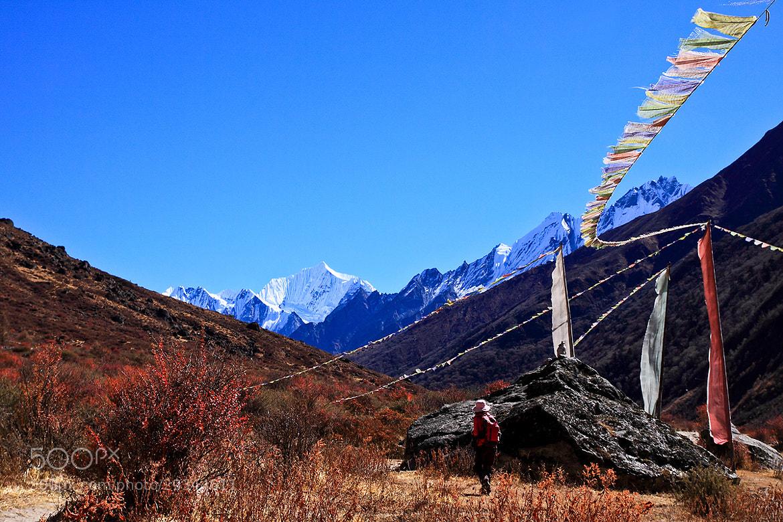 Photograph Langtang trekking, Nepal by ทิวทิวา ภูตะวัน on 500px