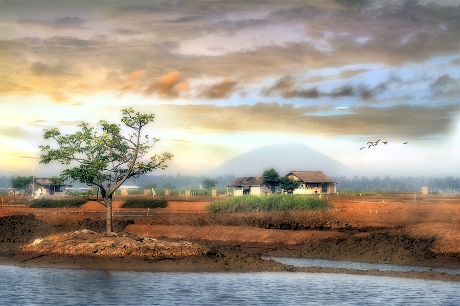 Photograph Farmland by Vincent Chung on 500px