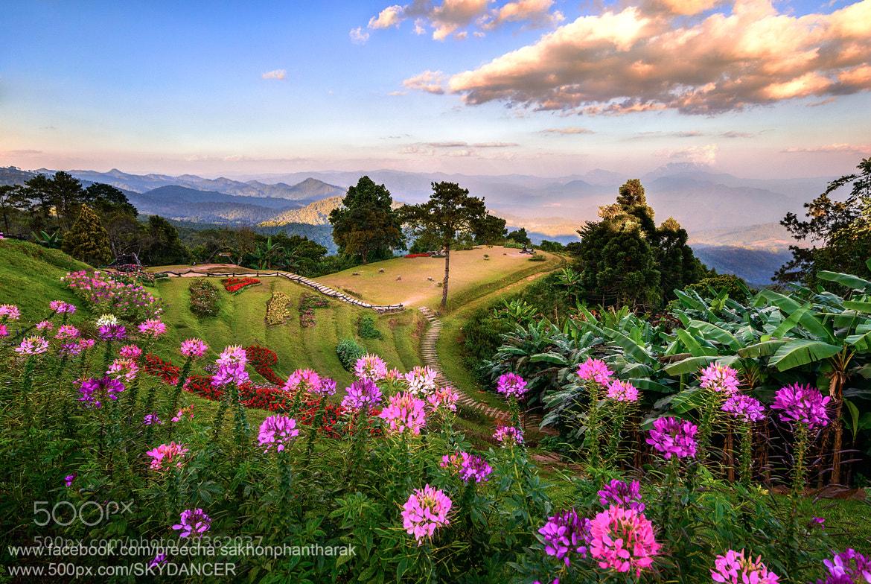 Photograph Huai NamDung National Park by SKYDANCER ! on 500px