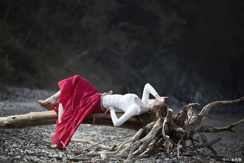 Photograph enjoy the fall by YeonHwan Kim on 500px