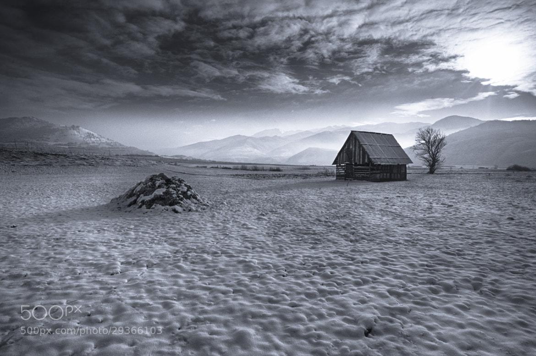Photograph Winter decor by Julien Oncete on 500px