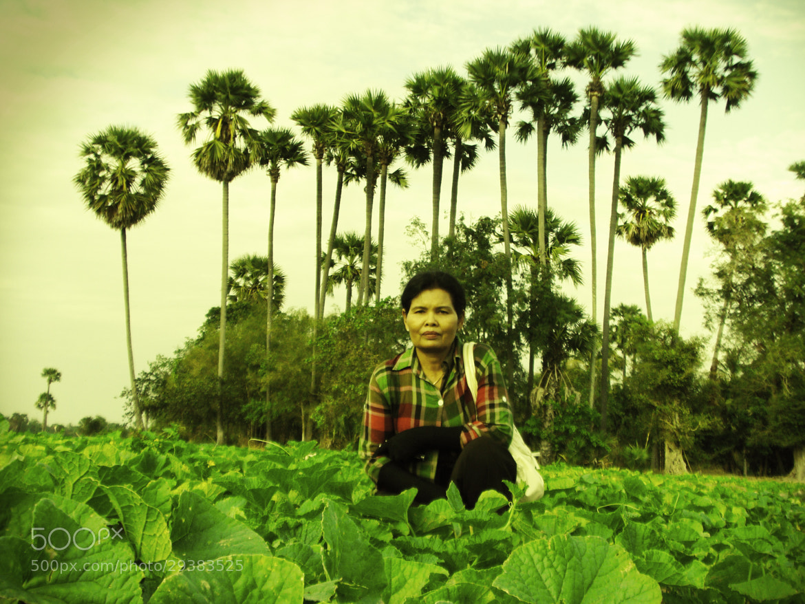 Photograph Owner Of Melon Farm In Cambodia by bou Sambath on 500px