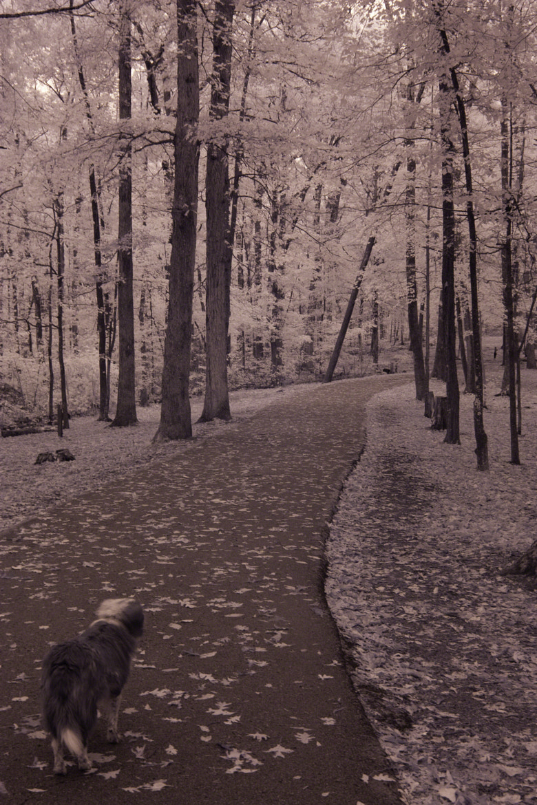 Photograph A Cold and Lonely Road by Larry Flynn on 500px