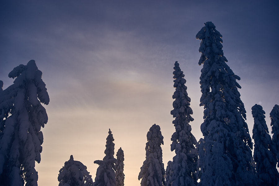 Giants in snow by Jere Ketola on 500px.com