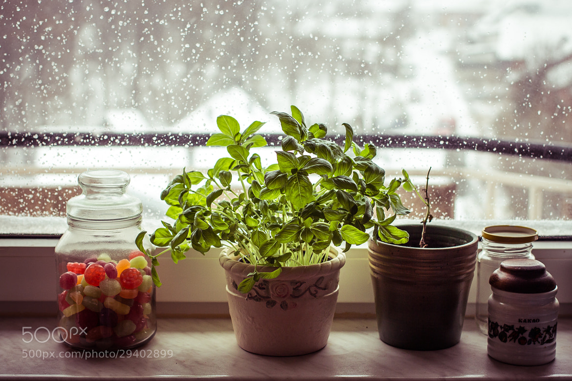 Photograph Where it's warm inside by Ivana Vasilj on 500px