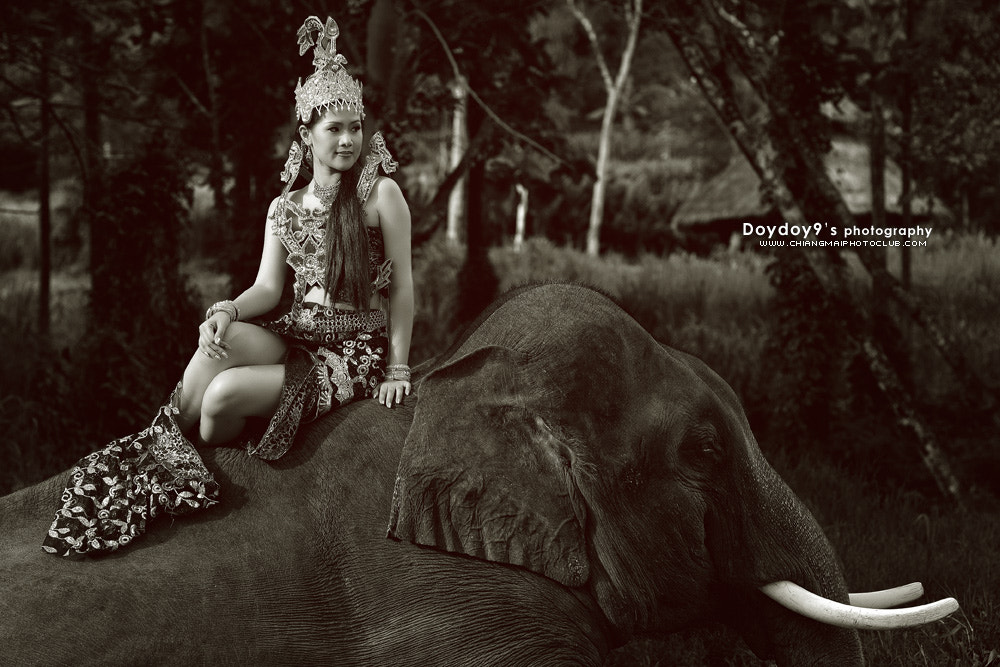 Photograph Angel with Elephant # 2 by Doy Pdamobiz on 500px