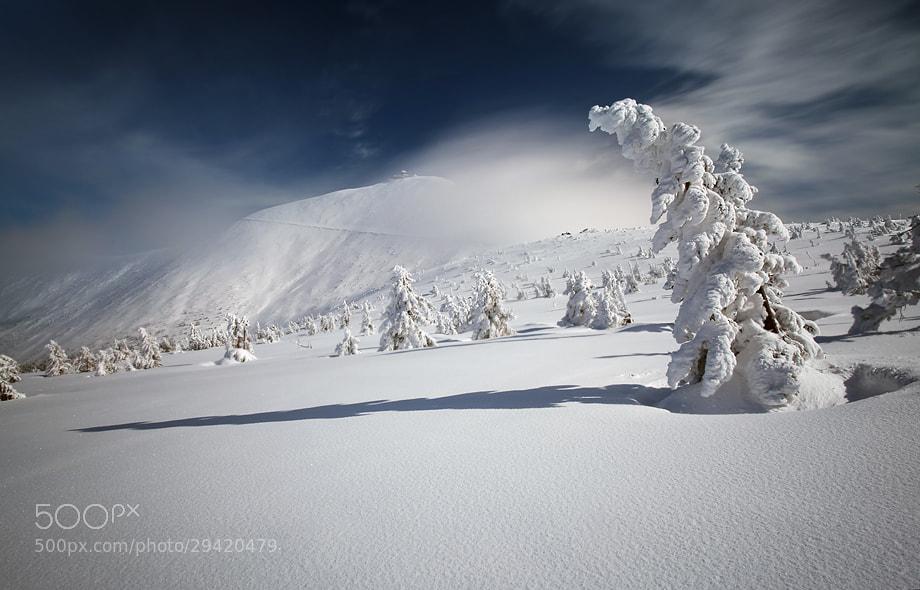 Photograph S/T by Karol Nienartowicz on 500px