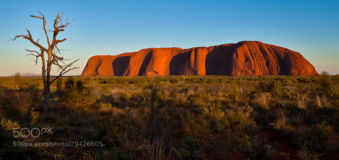 Photograph Sunrise at Uluru... by Paolo Guidetti on 500px