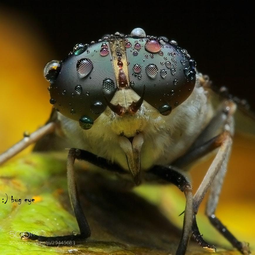 Photograph oOoOOoOOoo by bug eye :) on 500px