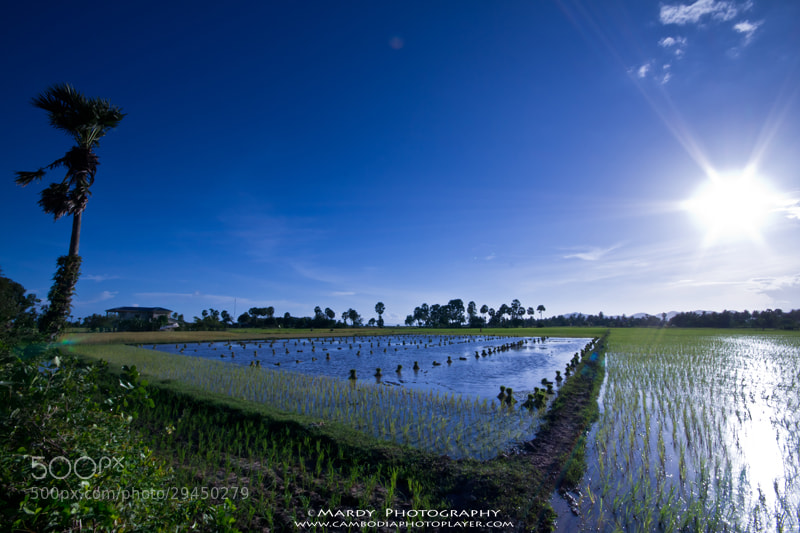 Photograph My country side view! by Mardy Suong Photography on 500px
