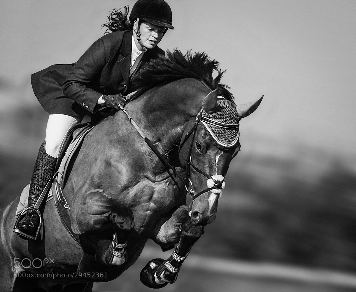 Photograph Jumping horse by Michael Peitersen on 500px