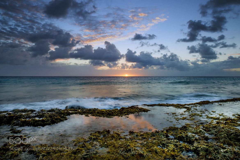 Photograph Low tide sunset reflection by Lorenzo Mittiga on 500px