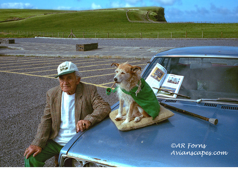 Photograph Is the dog Irish? by Alfred Forns on 500px
