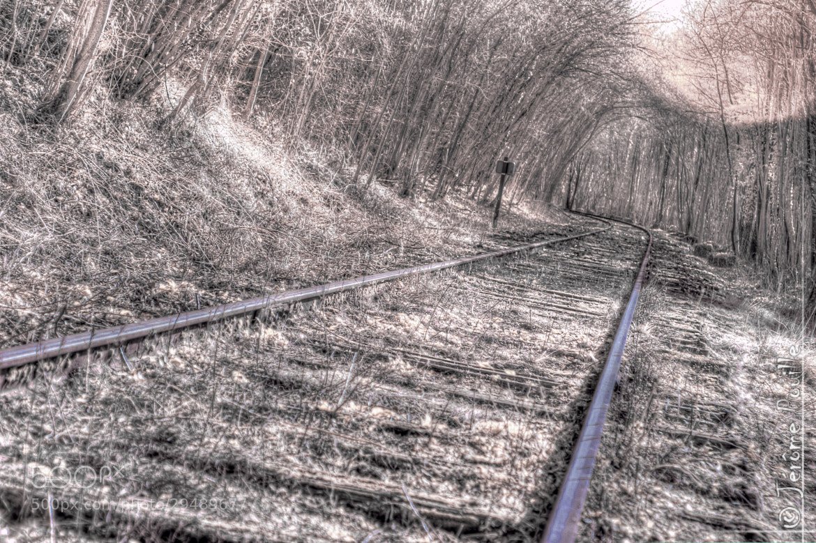 Photograph rails abandonnés by Jérôme Pouille on 500px