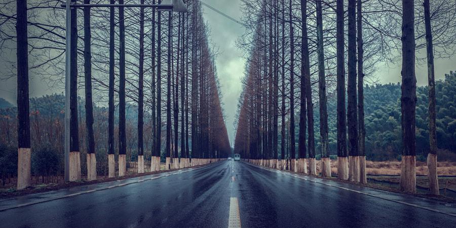 老公路 by 大虫ykl on 500px.com