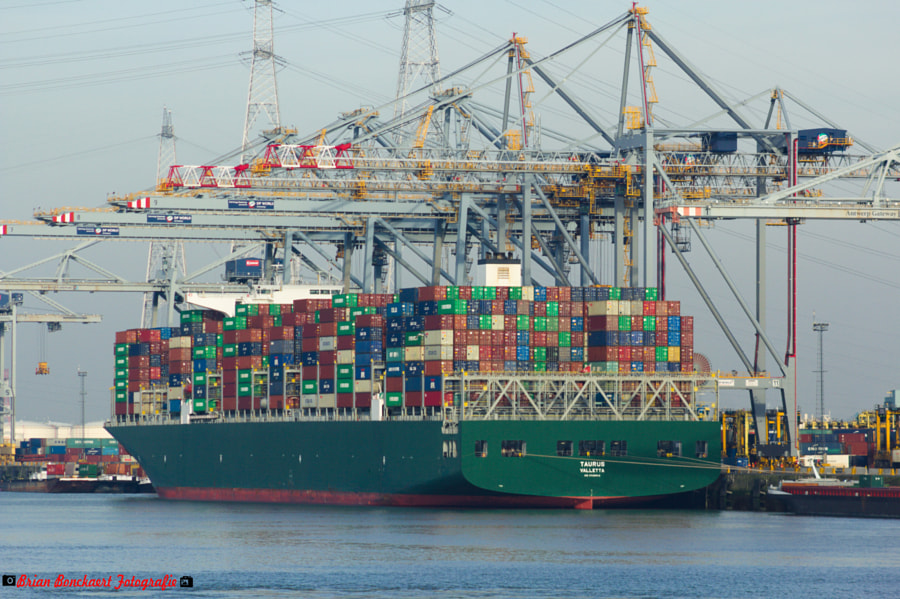Evergreen Taurus Container Ship by Brian Bonckaert on 500px.com