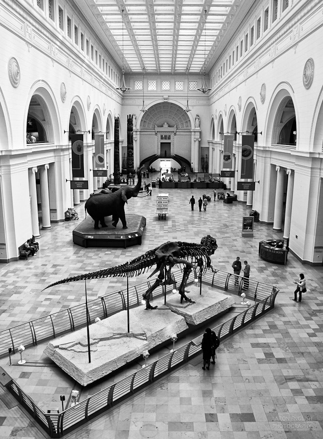 Photograph Museum  by Aaron English on 500px